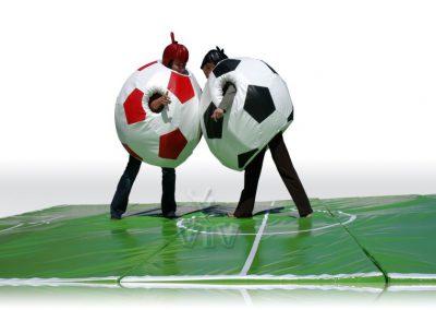 Fussball Sumo